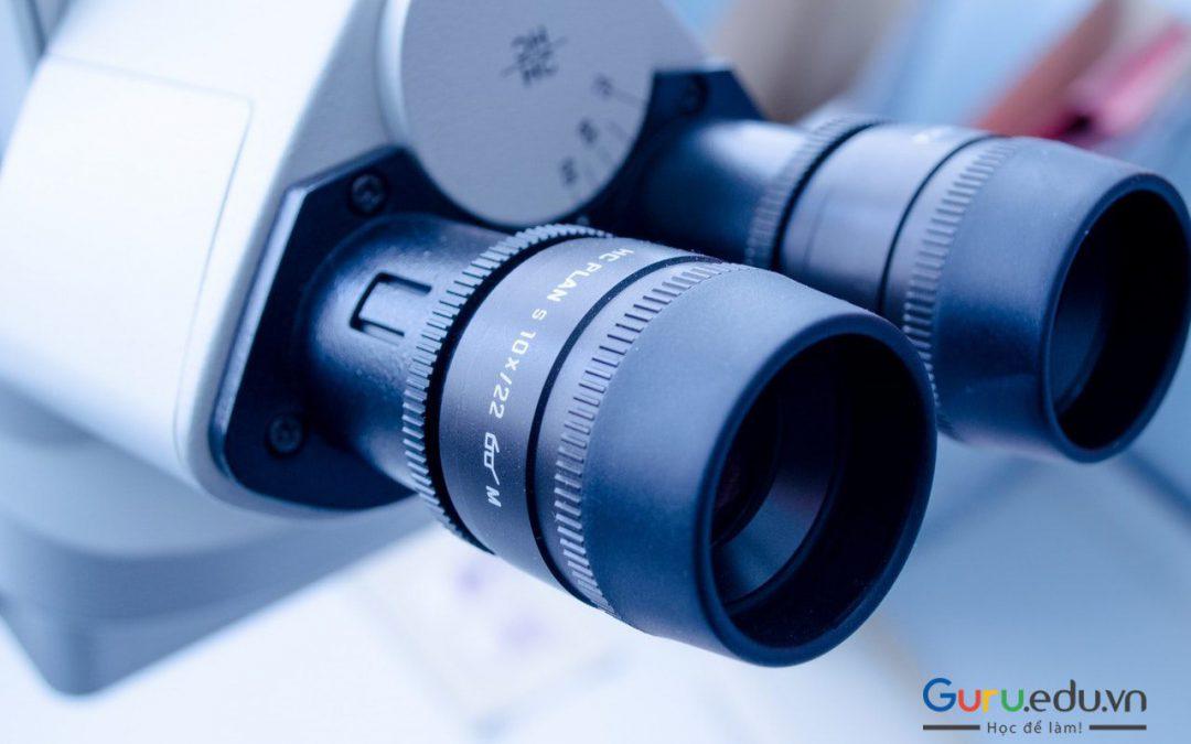 Nghiên cứu khoa học là gì? Các phương pháp nghiên cứu khoa học